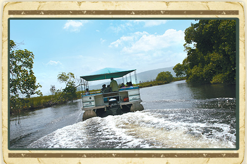 Appleton Rum & Black River Adventure